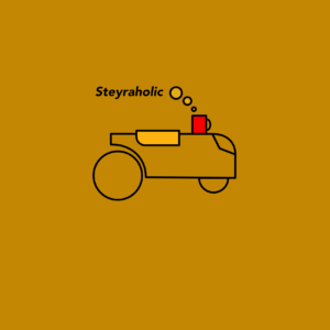 Logo Steyraholic